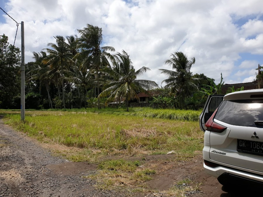 Best Deal!! Dropping Price Land For Sale At Lodtunduh Ubud
